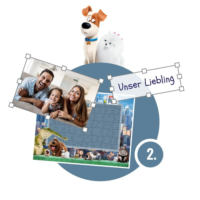 Pets-Puzzle gestalten - Schritt 2
