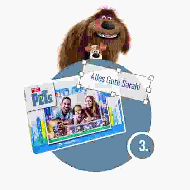 Pets-Puzzle gestalten - Schritt 3