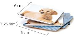 Größe der Memo-Karten