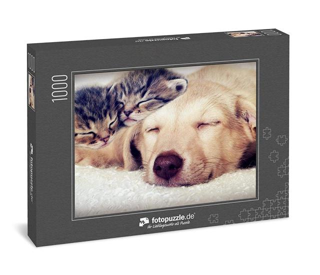 Puzzel Tiere Hund und Katze